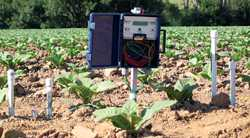 Soil Moisture Based Irrigation Scheduling