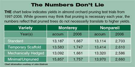 Whither Pruning