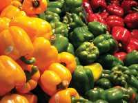 Enhancing Food Safety