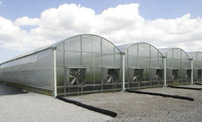 Participate In The 2015 Greenhouse Crop Production & Engineering Design Short Course