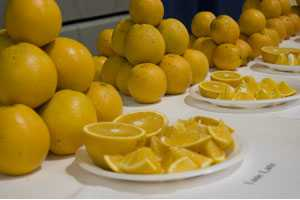 Here's Your Chance To Size Up New Citrus