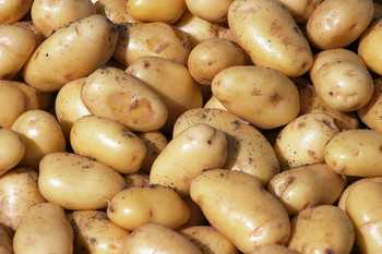 Report Recommends White Potatoes For WIC Purchase