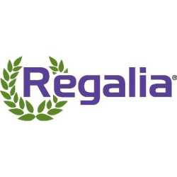 Regalia_Marrone logo