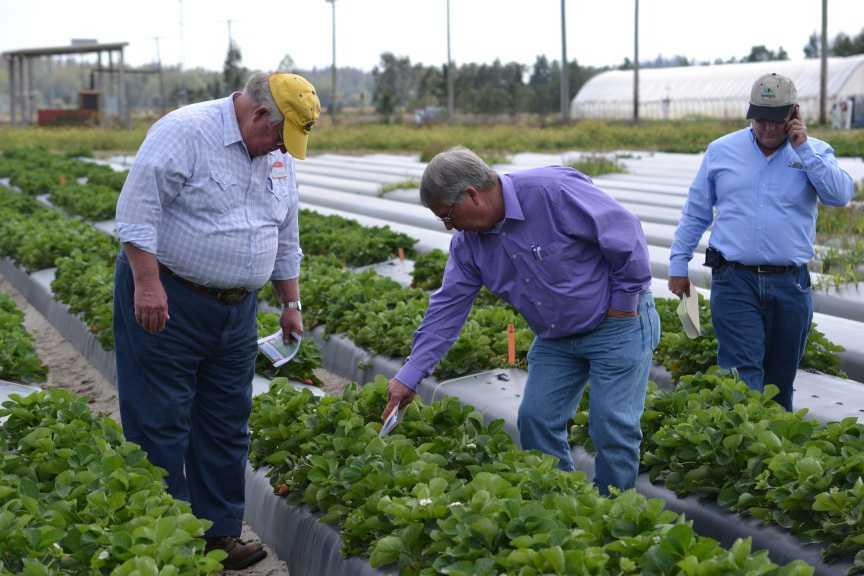 Mitigate Pesticide Resistance