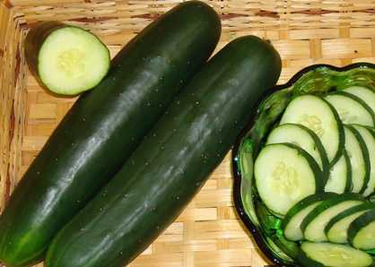 New Cucumber, Watermelon, Corn, and Pumpkin Varieties