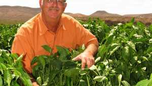 2012 Grower Achievement Award Winner: Steven Lyles Farms