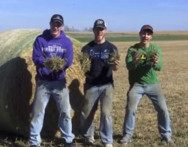 Farm parody of sexy and i know it on youtube