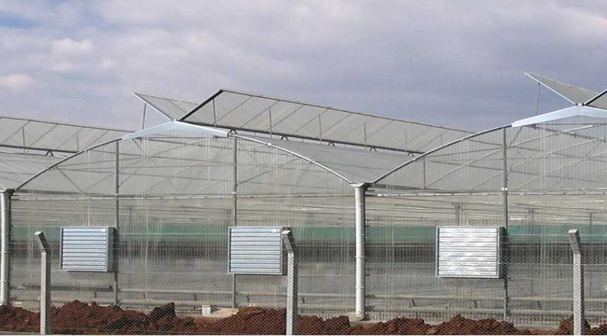 Choose The Right Greenhouse Style Growing Produce