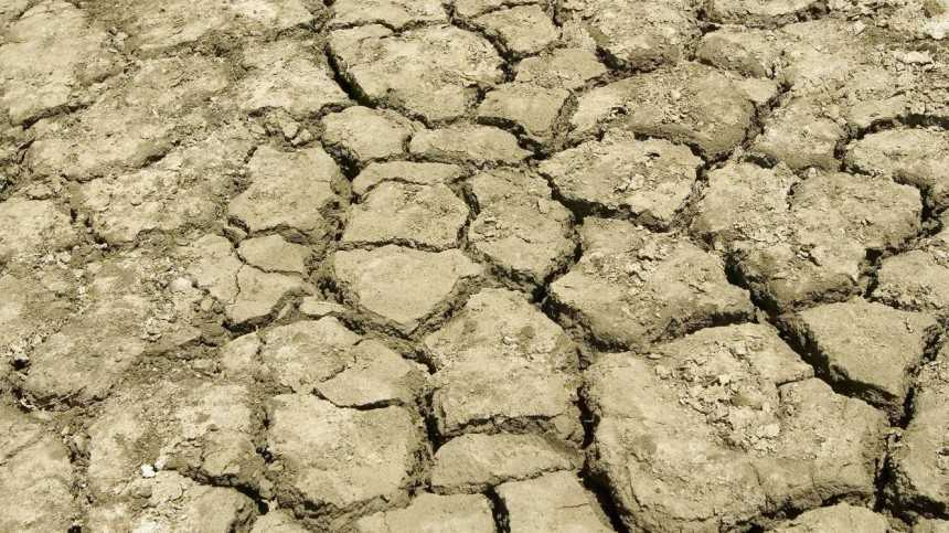 New Water Restrictions to Leave California Farmers High and Dry