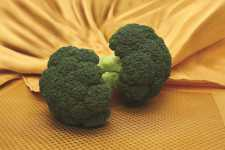 Emerald Jewel broccoli