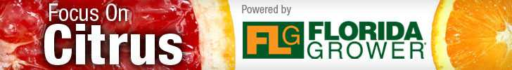 Topical – Florida Grower Focus On Citrus