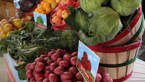 USDA Report: Pesticide Residues Not A Food Safety Concern