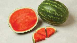 Watermelons Trending In Central Florida