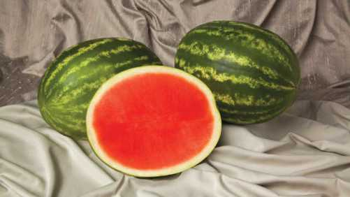 6 Juicy Watermelon Selections For The Sunshine State