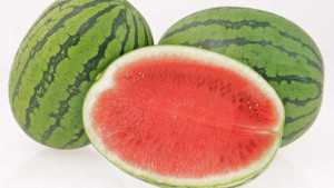 Nunhems To Introduce New Watermelon Variety At National Watermelon Convention