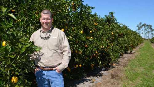 Duda Citrus Division's Big Planting Makes Bigger Statement