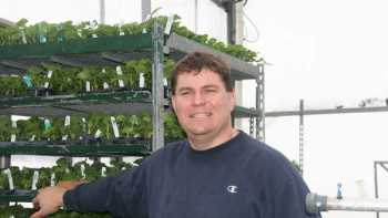 New York grower Mark Zittel provides habitat for beneficial insects, which has helped him keep pepper transplants nearly pest-free. Photo credit: Kristen Winiecki.