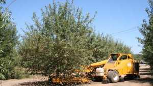 Workshop Focuses On Dust Management At Harvest