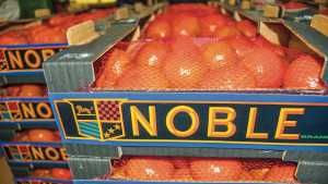 Seminole Tribe Of Florida Acquires Majority Stake In Blue Lake Citrus