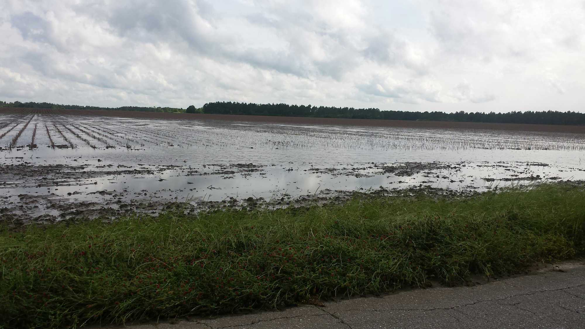 Florida Panhandle flood-April 2014