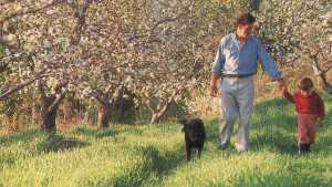 Steve Wood, Apple Grower of the Year