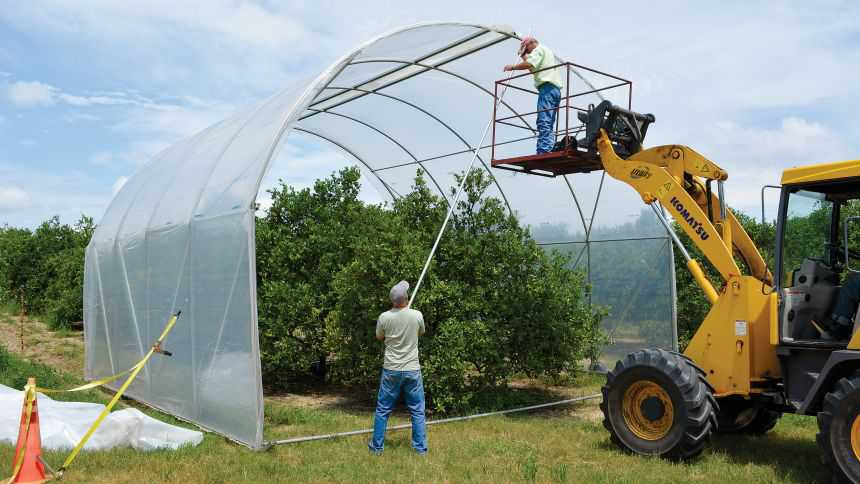 Rex Clonts puts his mechanical skills to work gained growing vegetables to construct a thermotherapy system for citrus. Photo by Frank Giles
