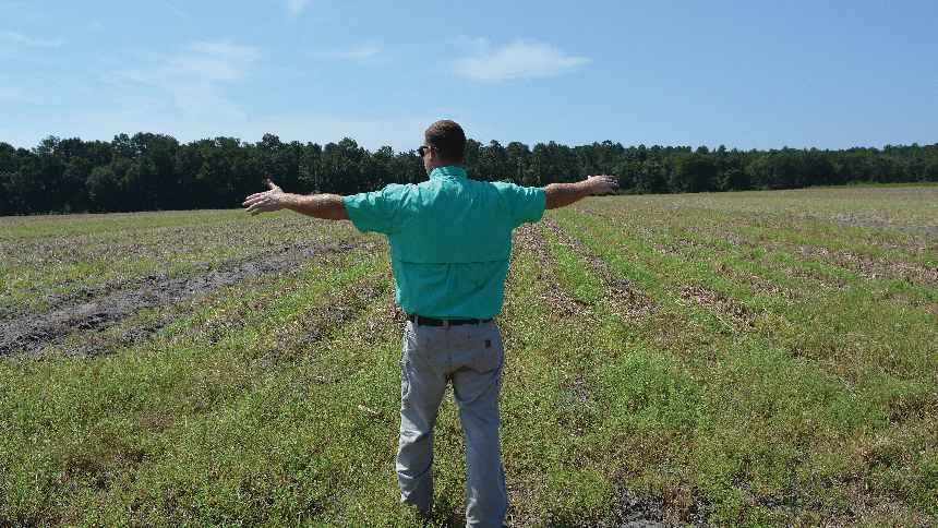 Bryan Jones says the combination of fertilizer banding equipment and enhanced subsurface drip irrigation will go a long way toward helping reduce nutrient runoff, reducing input costs, and potentially increasing productivity. Photo by Frank Giles