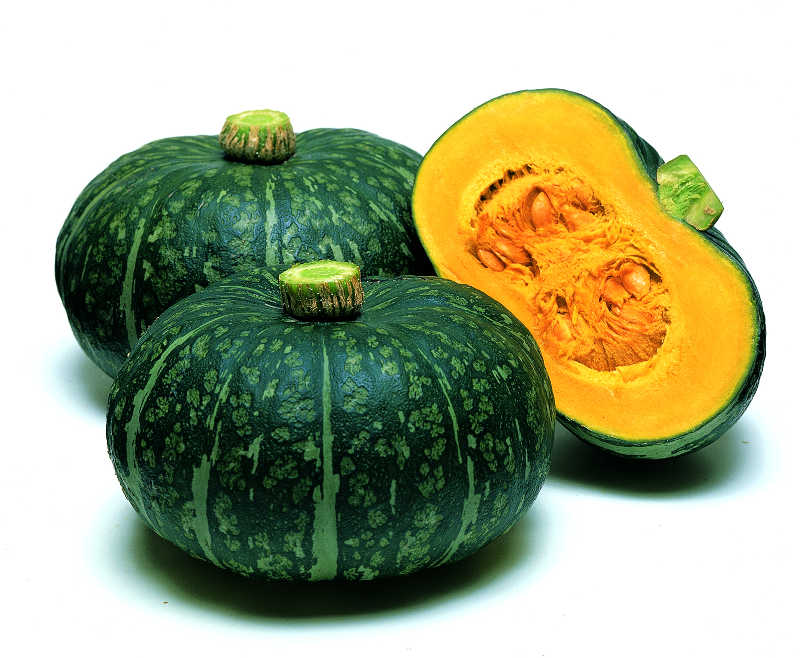 20 Top Notch Squash Varieties Slideshow Growing Produce