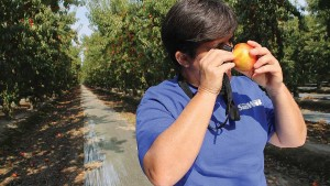 What Growers Need To Know About Maximum Residue Levels