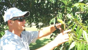 Georgia Universities Evaluating New Crop Monitoring Technologies
