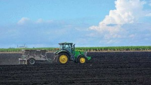 Everglades Research And Education Center Set To Take Wraps Off Updated Soil Testing Lab