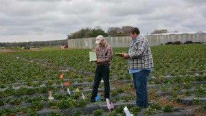 Parry America Aims To Boost Biopesticide Business Via Sales & Marketing Hire