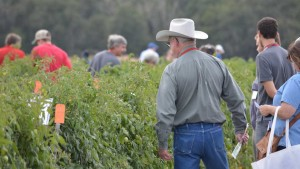 10th Annual Florida Ag Expo Field Tours To Tackle Production Challenges