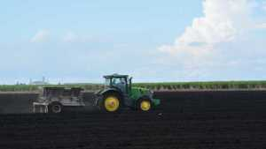 Florida Farmland Becoming Big Deal For Institutional Investors