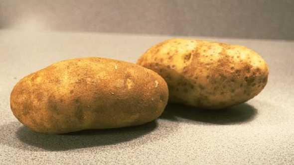 USDA Green Lights Genetically Modified Potato - Growing Produce