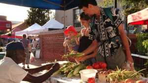 Workshop Set In Florida To Help Grow Local Food Movement