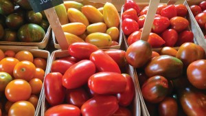 New Resource Helps Assess Local Food Benefits