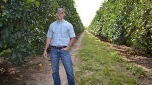 Florida Citrus Grower Takes On Big Task Of Micro-Managing HLB