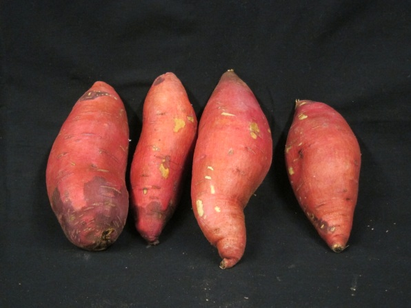 Sweet Potato Options For Midwest Growers - Growing Produce