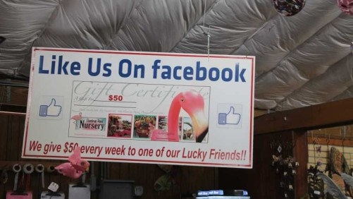 5 Ways to Double Your Farm's Revenue Using Facebook