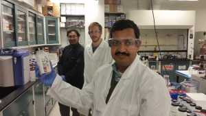 Researchers Mine Nanotechnology To Help Conquer Citrus Canker