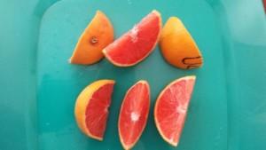 Citrus Showcase: A Very Informal Varietal Tasting