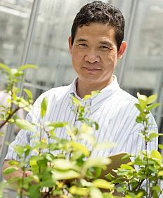 A Breakthrough In Biotechnology And The Future Of The Fruit Industry