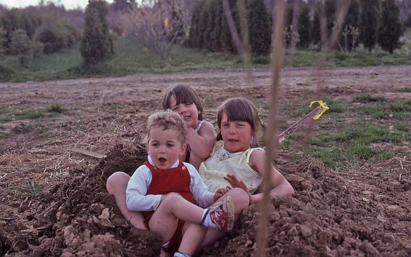 The Mount children, Reuwai, Tannwen, and Mark help plant trees in the orchard. (Photo credit: Terhune Orchards)