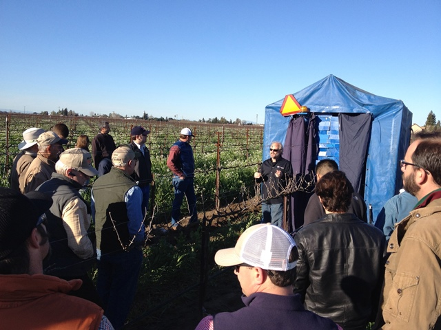Bret Wallach, president of Vision Robotics Corp., demonstrates the robotic pruner to grape growers. The pruner straddles the row and is blue. Blue does not occur in grapevines, so the visioning system can subtract the background from the grapevines.