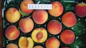 The Strong Staying Power Of The Redhaven Name In Peaches