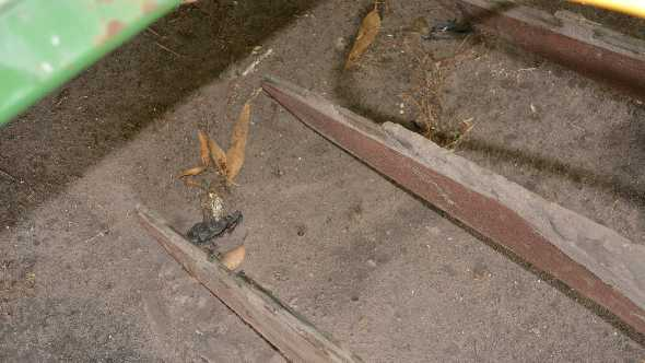 improving fumigant coverage in vegetable beds