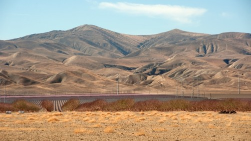 Drought Costing California $1.84 Billion This Year