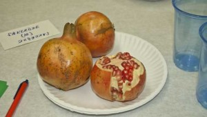 Ways to Price out Pomegranate Production in Florida