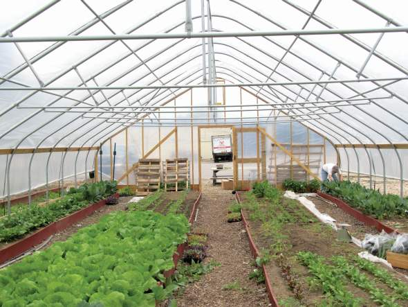 Those starting out in protected ag may opt to begin with a high tunnel instead of going right to a climate-controlled greenhouse. Photo credit: Bill Lamont
